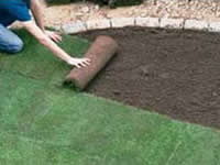 Laying Grass Hints and Tips