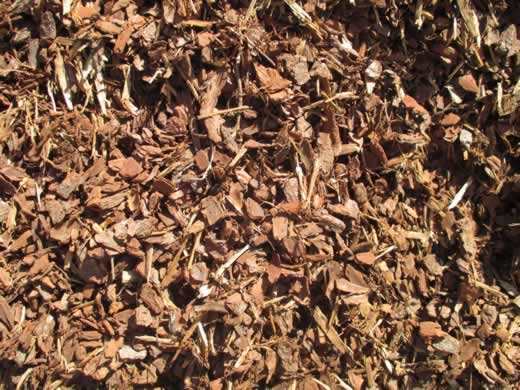 What is Mulch and, why is it needed?