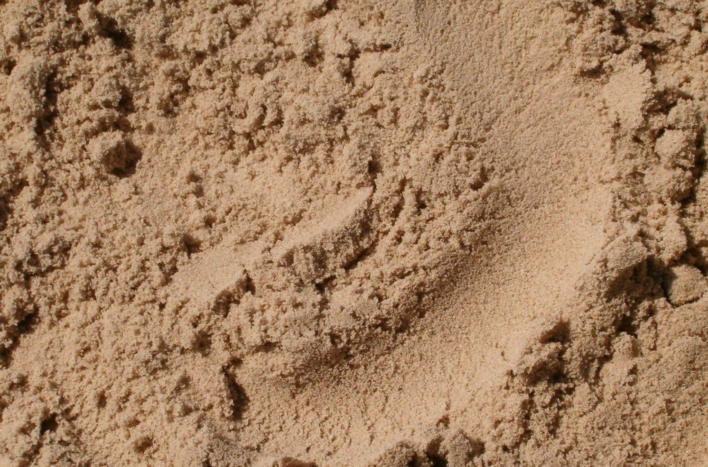 Which Sand Types To Choose for Your Landscape?