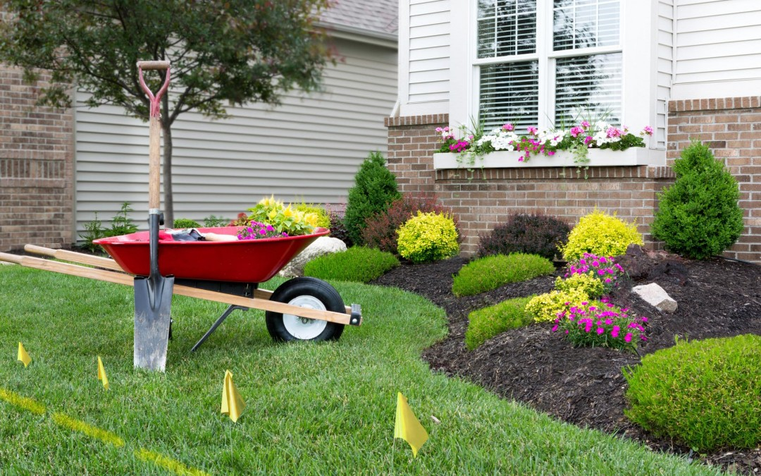 5 Useful Tips for Landscaping a New Home