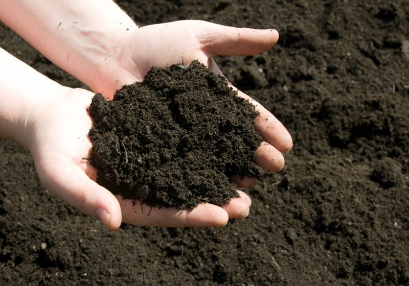 5 Different Types of Soil – Know Your Soil Type