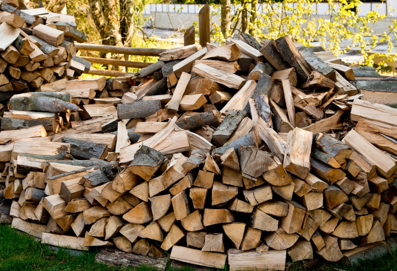 Quick Tips to Help You Choose The Right Firewood For Your House