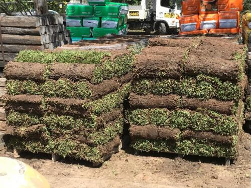 Turf Supplies North Shore