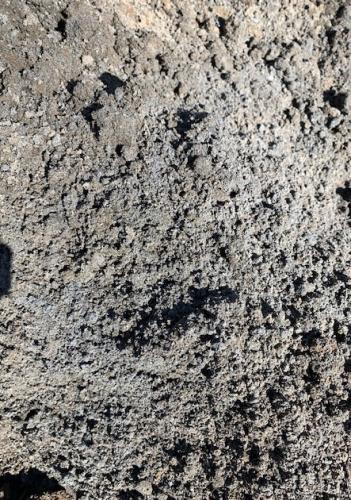 Organic Turf Grow Underlay Soil