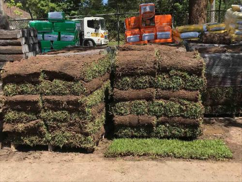 Turf Supplies Northern Beaches